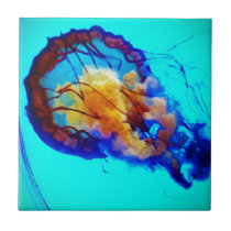 Jellyfish / Pacific Sea Nettle / Tile