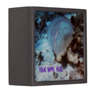 Jellyfish Personalized Premium Gift Box