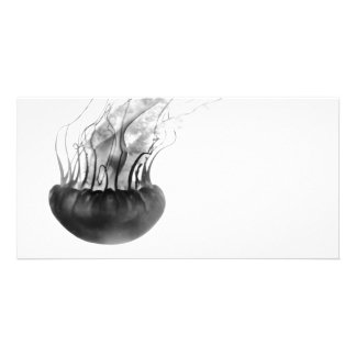 Jellyfish Photo Card (Black and White)