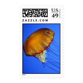 Jellyfish Postage