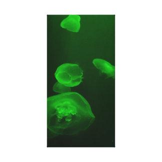 Jellyfish Premium Wrapped Canvas (Gloss)