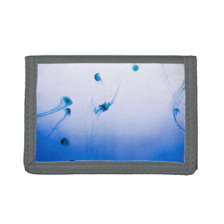Jellyfish reunion tri-fold wallets