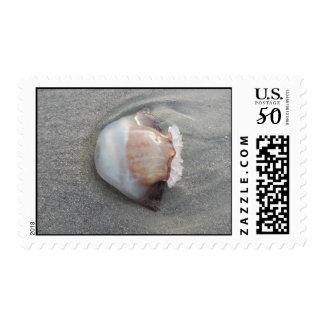 jellyfish sideway Postage
