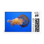 Jellyfish Stamp