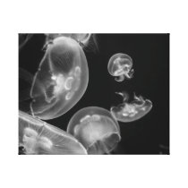 Jellyfish Underwater Canvas Print
