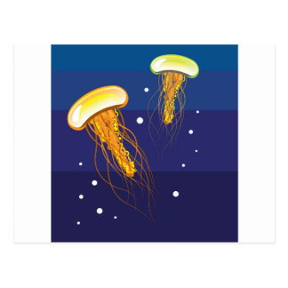 Jellyfish Vector Postcard