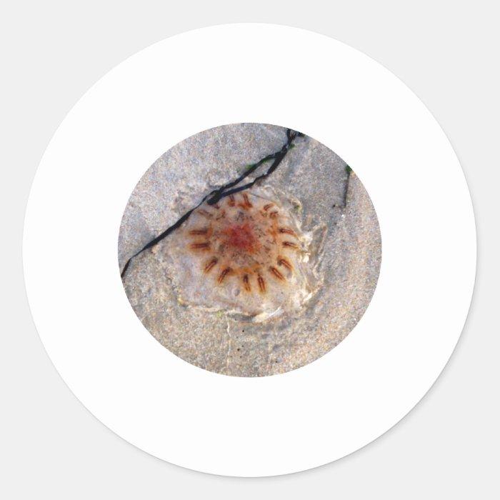 Jellyfist Classic Round Sticker
