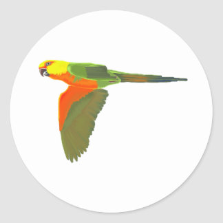 Jenday Conure Classic Round Sticker