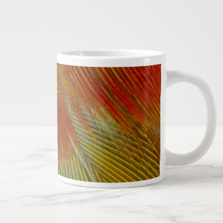 Jenday Conure Feather Abstract Large Coffee Mug