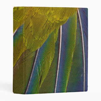 Jenday Conure Feather Design Mini Binder