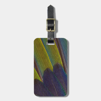 Jenday Conure Feather Detail Bag Tag