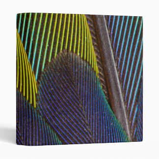 Jenday Conure Feather Detail Binder