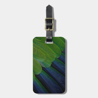 Jenday Conure feathers Luggage Tag