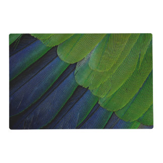 Jenday Conure feathers Placemat