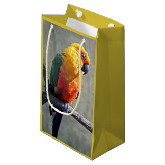 Jenday Conure Gift Bag