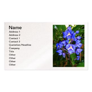 Jengibre azul tarjetas de visita