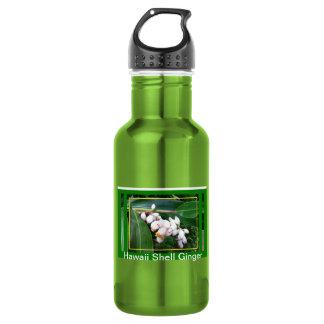 Jengibre de Botella-Hawaii Shell del agua