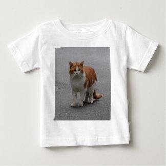 Jengibre de Thomas y gato blanco Camisas