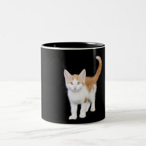 jengibre hermoso y gatito blanco taza de dos tonos