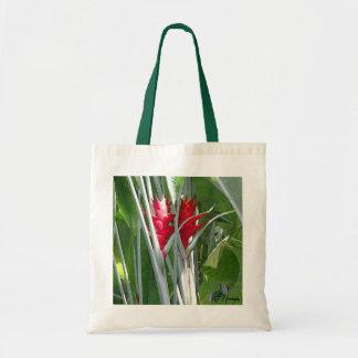 Jengibre rojo bolsa