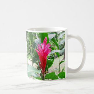 Jengibre rojo (red ginger) mug
