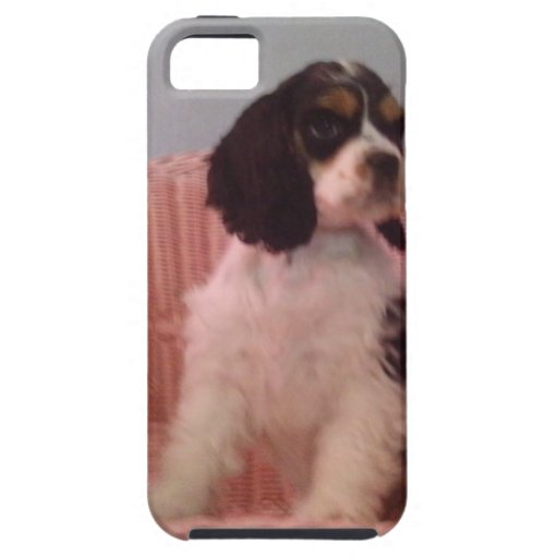 Jenna, Tri american cocker spaniel puppy Case For iPhone 5/5S