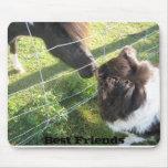 Jenna'sBoyfriend, Best Friends Mouse Pad
