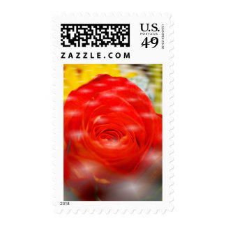 Jenni Rose Postage