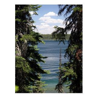 Jenny Lake, Wyoming Postcards