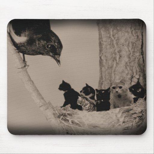 Jerarquía de gatos alfombrillas de raton