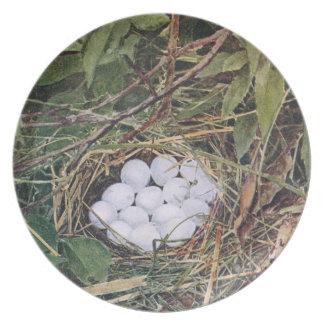 Jerarquía de la codorniz por completo de huevos plato de cena