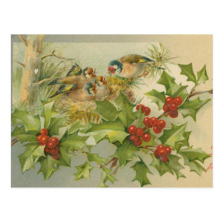 Jerarquía de los pájaros del navidad del vintage postales