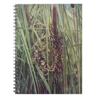 Jerarquía del Wren de pantano en Cattails Libretas Espirales