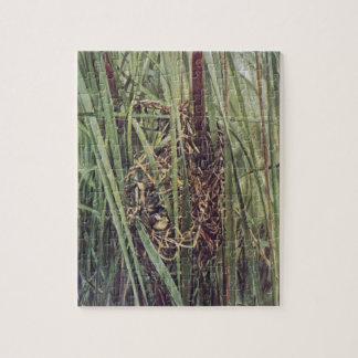 Jerarquía del Wren de pantano en Cattails Puzzles Con Fotos