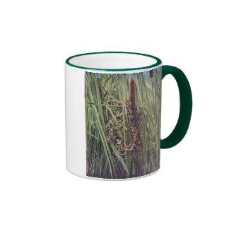 Jerarquía del Wren de pantano en Cattails Tazas De Café