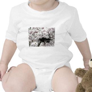 Jerarquía Camisetas