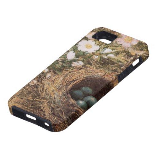 Jerarquía y Dogroses de los pájaros por la colina, iPhone 5 Funda