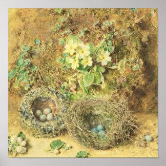 Jerarquías de las primaveras y de los pájaros posters