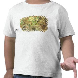 Jerarquías de las primaveras y de los pájaros camiseta