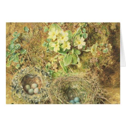 Jerarquías de las primaveras y de los pájaros tarjeta