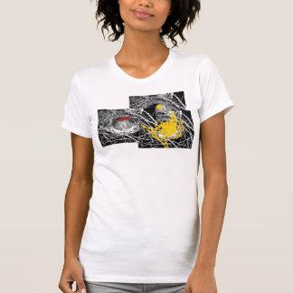 Jerarquías del pájaro camisetas