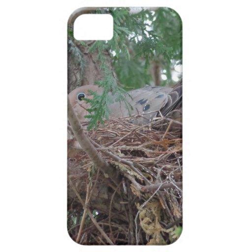 Jerarquización de la paloma de la mañana iPhone 5 Case-Mate fundas