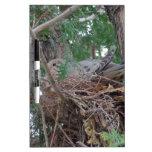 Jerarquización de la paloma de la mañana tableros blancos