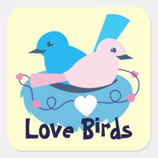 jerarquización de los pájaros del amor del wren pegatina cuadrada