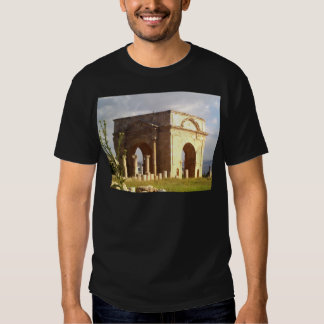 Jerash Roman Structure T Shirt