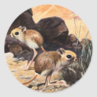 Jerboa Tees and Gifts Classic Round Sticker