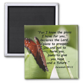 Jeremiah 29:11 (2) magnet