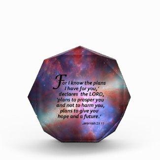 Jeremiah 29:11 awards