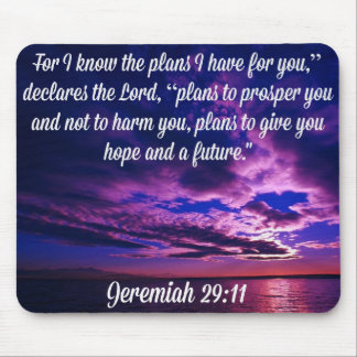 Jeremiah 29:11 God's Glory Products Mouse Pads