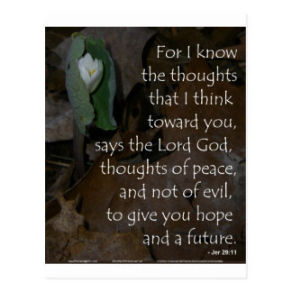 Jeremiah 29:11 hope for the future postcards